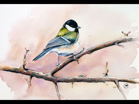 Watercolor Bird on a Tree Painting Demo