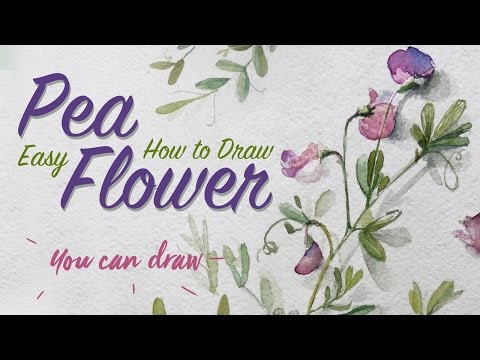 How to Draw Realistic Flowers | Learn To Draw Pea Flower Easy | Watercolour Art Tips | Spring Plants