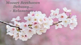 Musique Classique Piano pour Travailler Étudier et se Concentrer🎵Classical Study Music Concentration