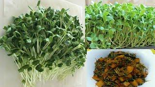வெந்தயக்கீரை பொரியல்/ fenugreekspinach recipe/Methi ki sabzi/Keerai poriyal/ Spinach/கீரை பொரியல்