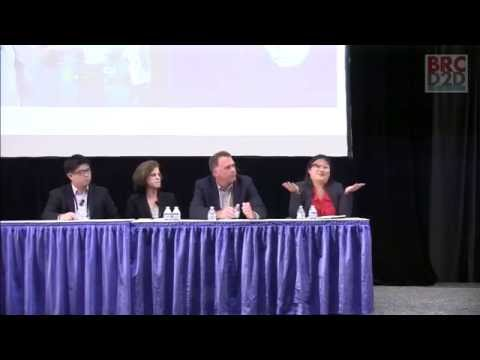 BRCD2D Panel 2014 - Smart Vision, Smart Glasses