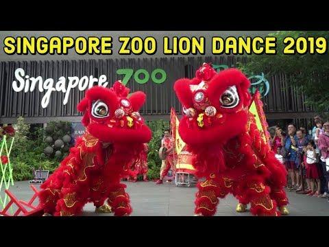 Singapore Zoo Lion Dance 2019