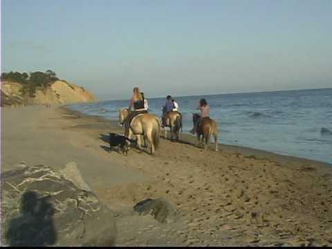 Beach Riding Malibu