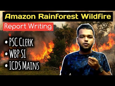 Amazon Rainforest Wildfire - English Report Writing - WBPSC - Clerk - ICDS - WBP SI - Mains English