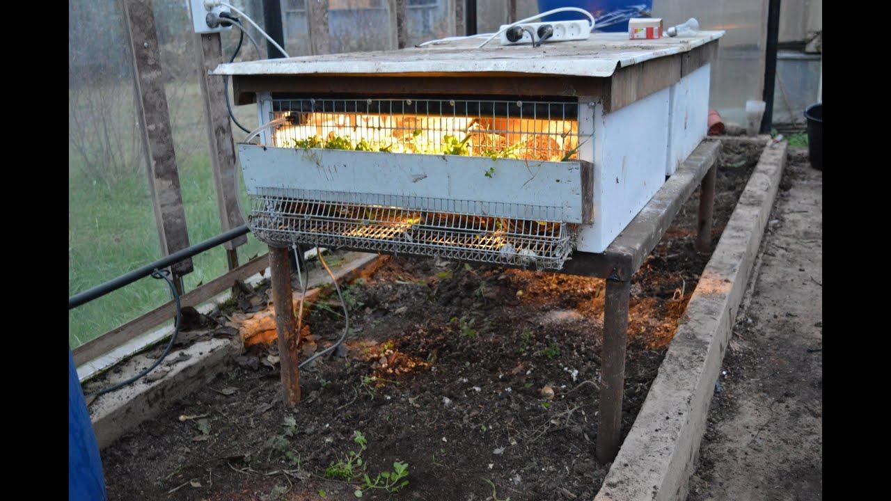Содержание перепелов зимой в теплице. оборудование. - youtub.