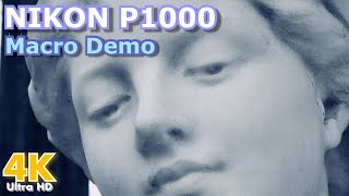 Nikon Coolpix P1000 - Macro and 4K Demo