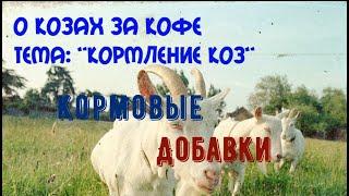 Кормление коз  Кормовые добавки