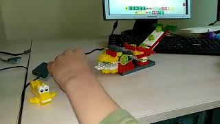 Занятия по основам робототехники и программирования в Мела Росса