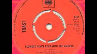 Toast - Flowers never bend with the rainfall (magical pop)