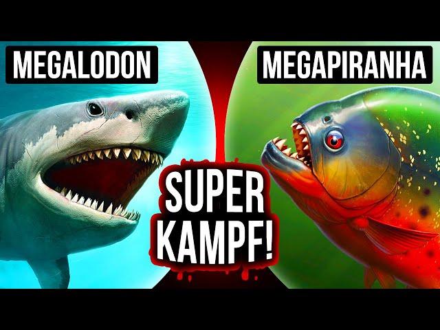 Was wenn Megalodon und Megapiranha aufeinander träfen