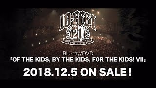 10-FEET - Blu-ray/DVD「OF THE KIDS, BY THE KIDS, FOR THE KIDS! VII」ティザー