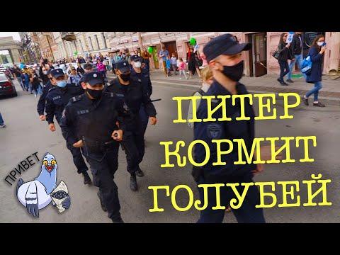 Питер поддерживает Хабаровск. Прошла акция #Кормимголубей в поддержку Хабаровска и Сергея Фургала.