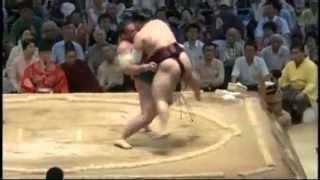 栃ノ心の膝が心配 tochinoshin tokusyoryu sumo.