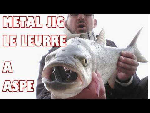 ASPE AU METAL (CASTING) JIG : LE LEURRE INDISPENSABLE EN AUTOMNE