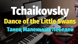 Dance of the Little Swans // Танец Маленьких Лебедей - Piano Cover(Danse des petits cygnes - a famous dance from Tchaikovsky's Swan Lake Ballet. This is my own piano arrangement. SHEET/НОТЫ: https://goo.gl/Dj8PpC Get ..., 2017-01-06T20:56:03.000Z)