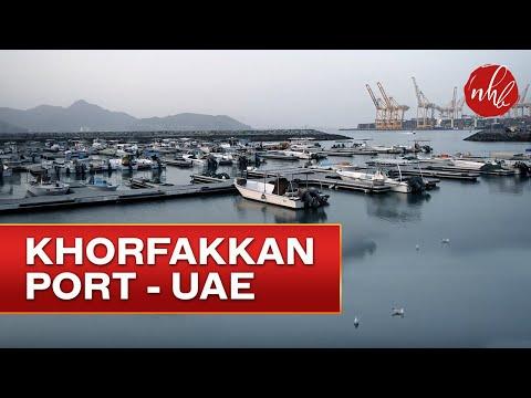 An Evening in Port Khorfakkan | Fujairah