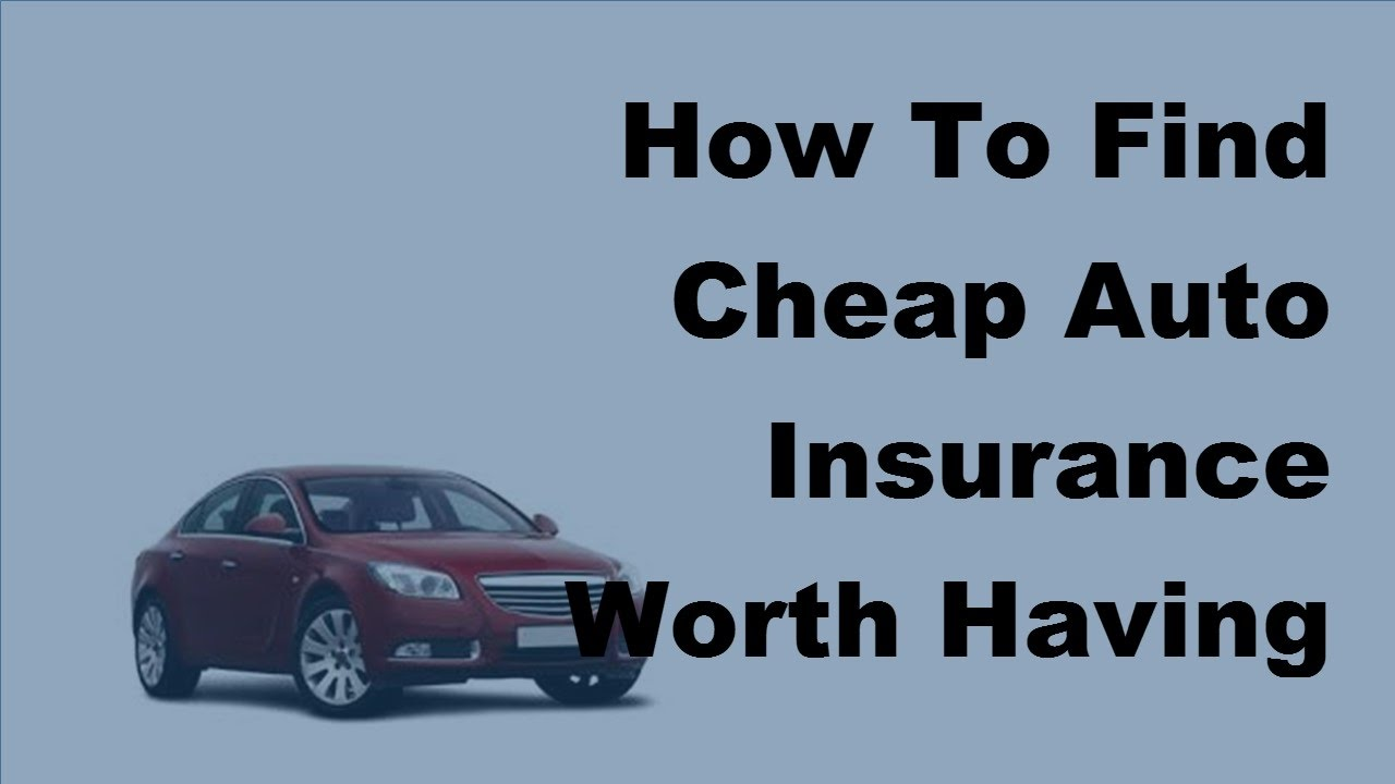 how to search for car insurance