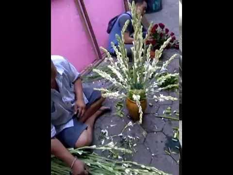 Rangkaian Bunga Sedap Malam Youtube