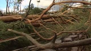 Mit Sturmjaegern unterwegs Tornados in Deutschland