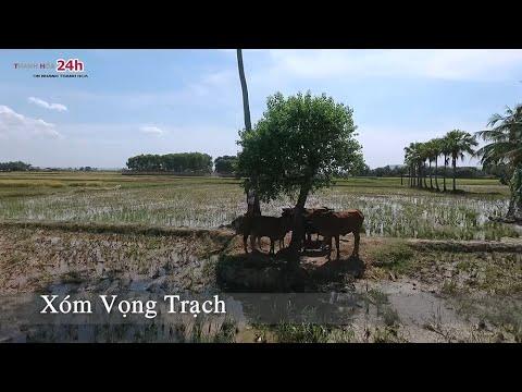 Quê hương tôi - Quảng Xương, Thanh Hóa