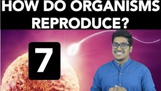 Biology: How do Organisms Reproduce? (Part 7) thumbnail