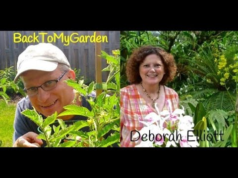 BTMG 093: Alabama Gardening Tips with Deb Elliott