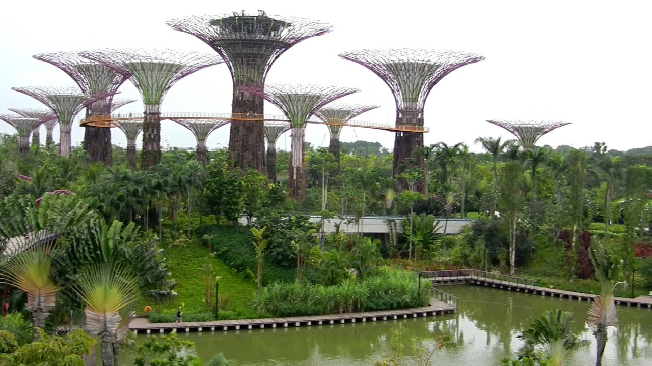 Gardens by the bay nouveau jardin botanique de singapour for Botanic com jardin