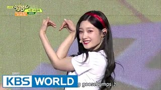 DIA (with. MOMOLAND) - Will you go out with me | 다이아 (with.모모랜드) - 나랑 사귈래 [Music Bank / 2017.05.19]