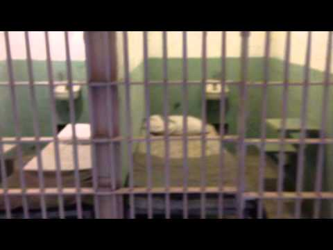 Alcatraz prison, San Francisco Bay