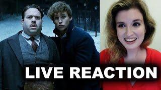 Fantastic Beasts Comic Con Trailer Reaction
