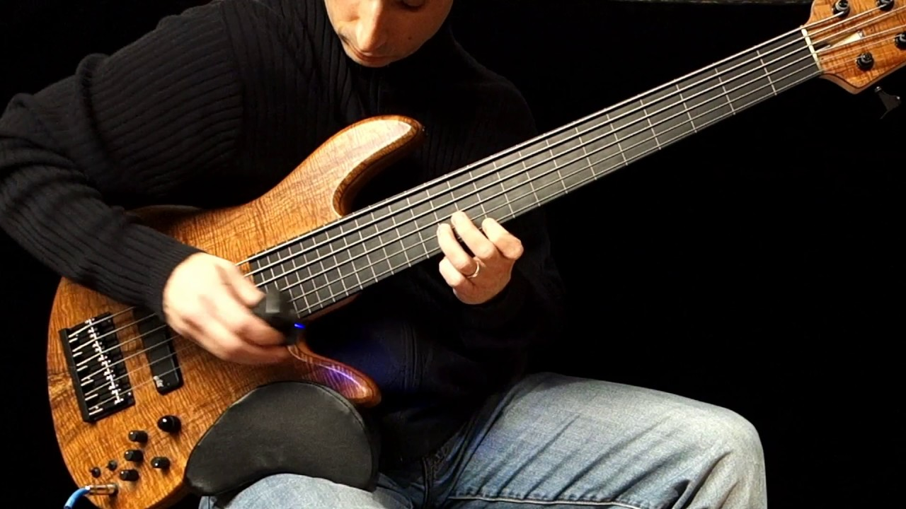 6 String Fretless Bass With Ebow Boss Loop Station