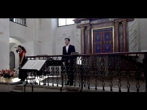 Vašek Nedbal - Sound of Silence (Synagoga Kolín 3.6.2016)