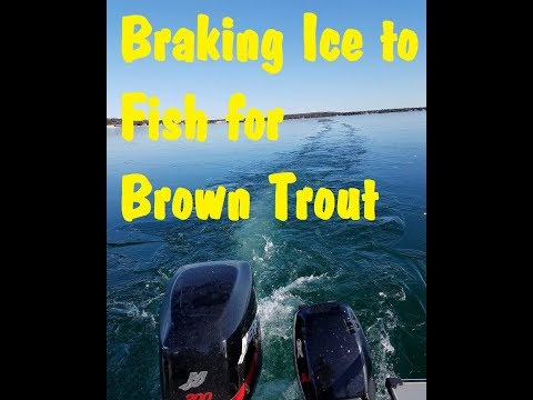 Brown Trout Fishing Baileys Harbor Tournament Door County Wisconsin April 2018
