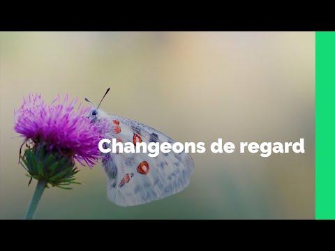 Vidéo Respectons le vivant qui nous entoure