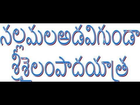SRI SAILAM PADAYATHRA, నల్లమల అడవి గుండా శ్రీశైలం పాదయాత్ర
