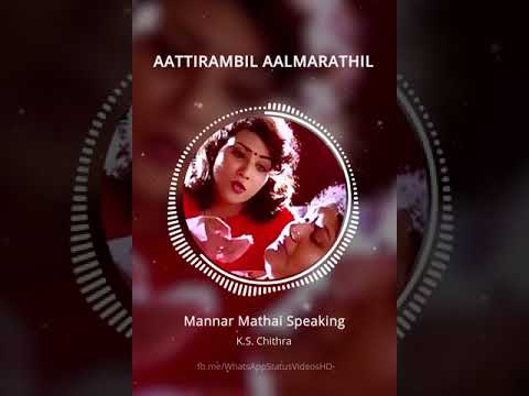 Aattirambil aalmarathil,mannar mathayi speaking by alfi soul.