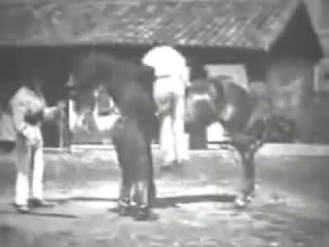 Auguste and Louis Lumière - La Voltige (1895)