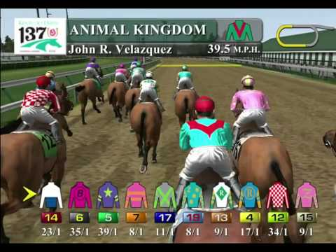 Ride The Derby Winner - 2011 - Animal Kingdom