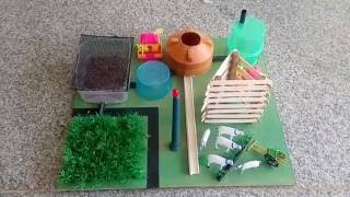 Bio Gas Plant - Science and Technology Projects, School Projects