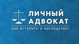 видео Личный адвокат