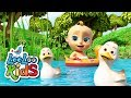 Five Little Ducks - THE BEST Educational Songs for Children | LooLoo Kids
