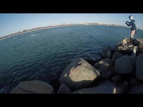 FEED Flip : Shore Jigging Mooloolaba