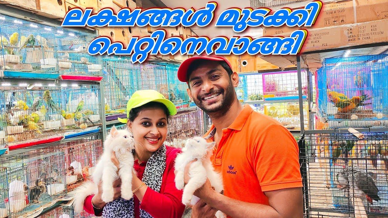 ഞങ്ങളും വാങ്ങി ഒരു ലക്ഷം രൂപയ്ക്ക് പെറ്റിനെ🐕🦮🐀🐓🦜🐠 Kerala Thrissur big pet shop