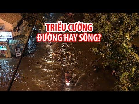 TRIỀU CƯỜNG Sài Gòn đạt đỉnh, cô gái đẹp trôi dép bên chú chó bơi tung tăng