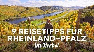 9 Rheinland-Pfalz Reisetipps im Herbst – mit Camping an Mosel und Rhein