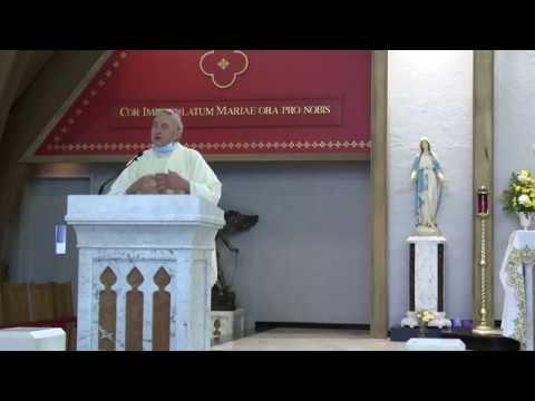 Daily Mass 7/1/20