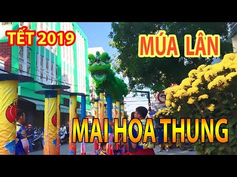 [ NAM PHONG ĐƯỜNG 2019 ] MAI HOA THUNG