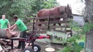A 1 Horse Power Log Splitter