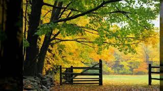 멋진 가을풍경 사진 모음