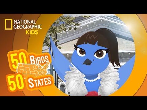 Nevada - Feat. Rapper MC Betty Blue the Mountain Bluebird | 50 BIRDS, 50 STATES